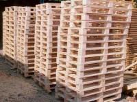 Praca w Holandii na produkcji palet i skrzyń drewnianych