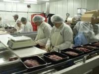 Oferty pracy w Niemczech przy pakowaniu mięsa bez znajomości jezyka od zaraz (Berlin)