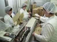 Aktualne oferty pracy w Niemczech od zaraz na produkcji przy pakowaniu lodów