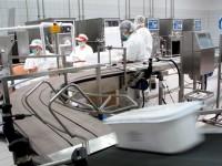Od zaraz Norwegia praca na produkcji jaj przy pakowaniu 2014