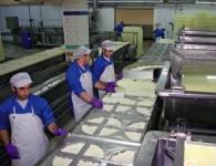 Praca w Holandii na produkcji sera Woerden przy pakowaniu, kontroli jakości