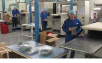 Holandia praca pakowanie na linii produkcyjnej bez znajomości języka