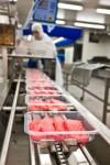 Anglia praca jako pomocnik produkcji w zakładzie przetwórstwa mięsnego Hull