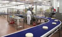 Praca Niemcy na produkcji cukierniczej od zaraz Stuttgart bez języka