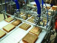 Praca w Anglii w fabryce przy produkcji Middlesbrough bez znajomości języka