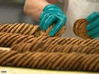 Praca Holandia na produkcji Harderwijk przy pakowaniu ciastek na linii produkcyjnej