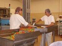 Bez znajomości języka praca Niemcy na produkcji słodyczy od zaraz Kolonia