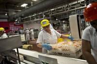 Od zaraz praca w Holandii bez języka przy produkcji żywności Eindhoven
