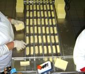 Oferta pracy w Holandii na produkcji spożywczej bez języka Zeewolde